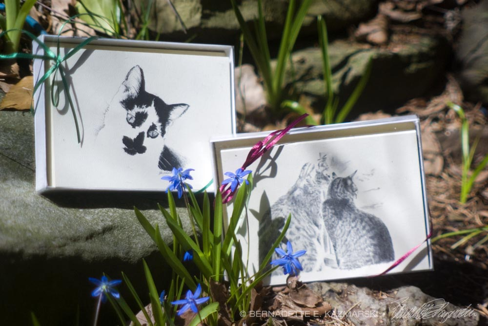 Feline-themed Card Sets and Note Cards
