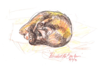 colored pencil; 021112-KellyBall