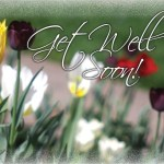 Get Well Tulips