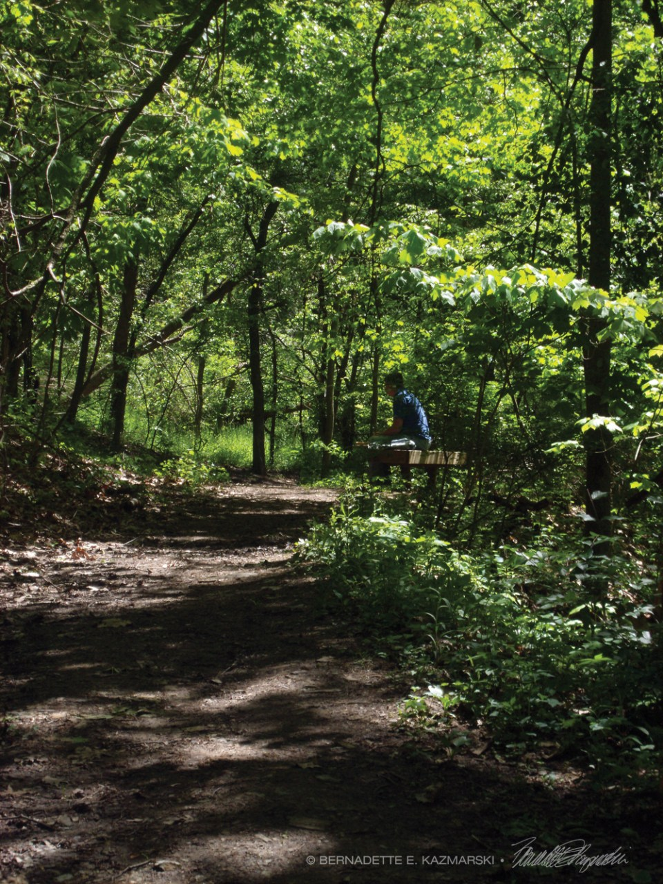 My brother Mark enjoying the woods along a trail in Scott Township.