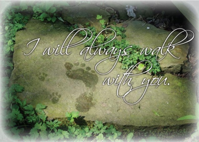 I Will Always Walk With You Animal Sympathy Card