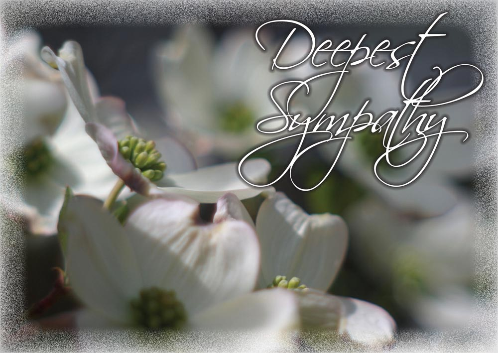 Spring and Summer Flowers Greeting Cards