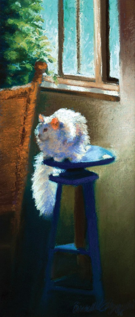 """White Cat Reflecting"", pastel on Hahnemühle sanded watercolor paper, 6″ x 14″© Bernadette E. Kazmarski"