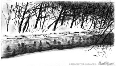 Creek Study in Snow