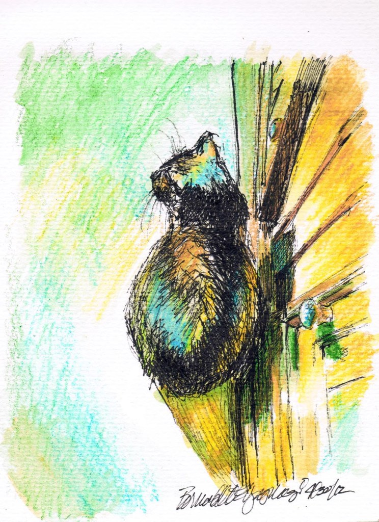 "Mimi's Sunbath, 5"" x 7"", ink marker and watercolor pencil © B.E. Kazmarski"