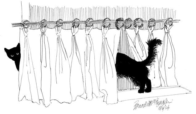 """One L-o-o-o-ng Kitty"", ink hybrid technical pen, 9″ x 5.5″ © Bernadette E. Kazmarski"