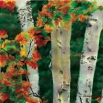Birches 1, Autumn Showers, oil pastel, 24.5 x 18, 1998 © Bernadette E. Kazmarski