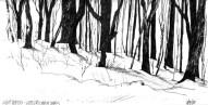 lightwoods