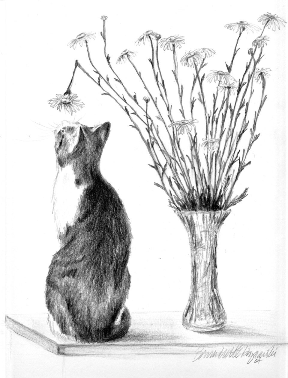 """Conversation With a Daisy"", pencil on cream cotton paper, 9"" x 12"", 2004 © B.E. Kazmarski"