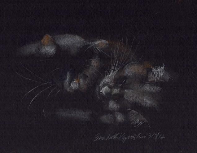 """Gentle Highlights"", pastel on black paper, 9"" x 7"" © Bernadette E. Kazmarski"
