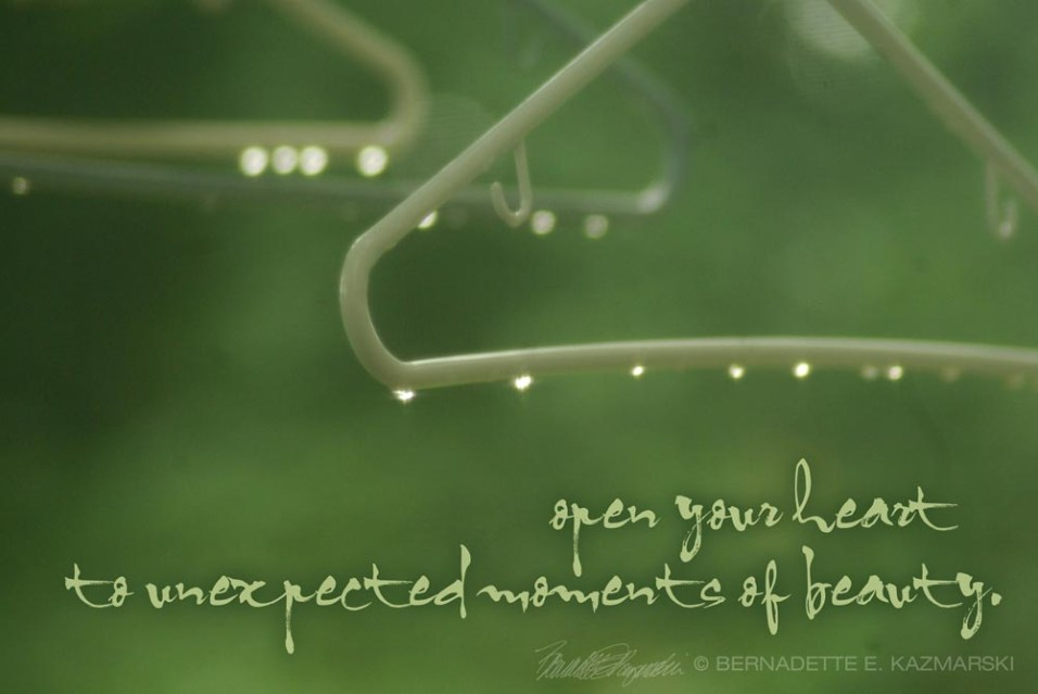 open your heart to unexpected moments of beauty