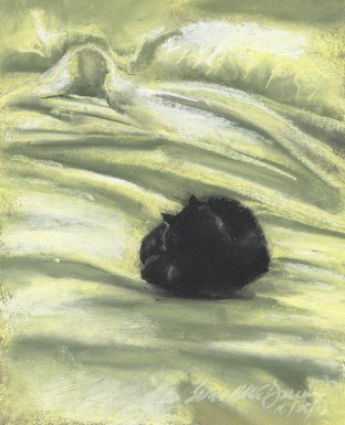 """Autumn Afternoon Bed"", 5.5"" x 7.5"", pastel © Bernadette E. Kazmarski"