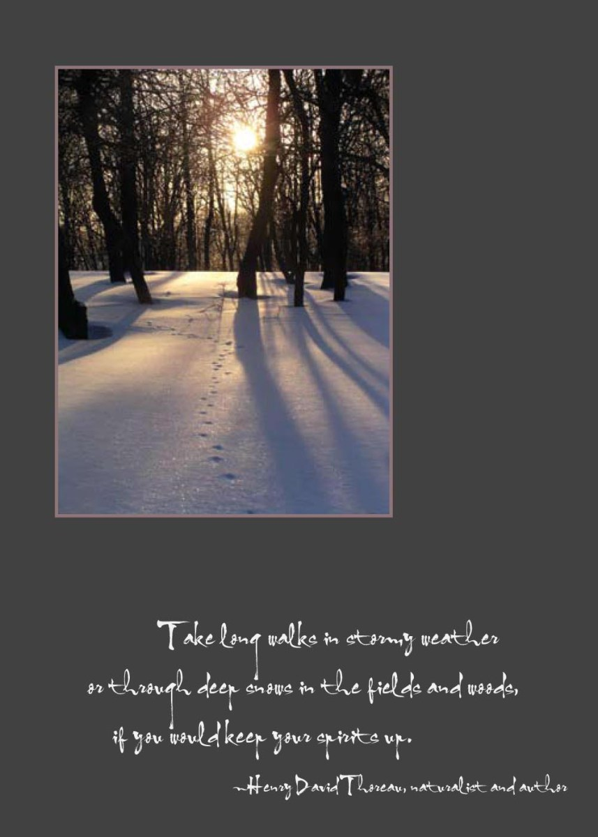 Thoreau-inspired Winter Walks Holiday Cards