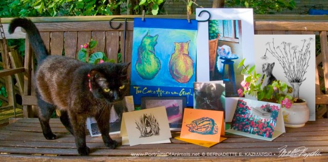 Mimi models the July 2016 Feline Sampler Box contents