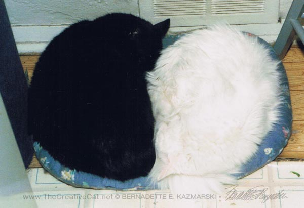 "Kublai and Sally often slept like this; the reference photo for ""Awakening""."