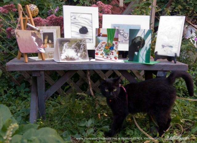 Mimi introduces the September Feline Sampler Box.