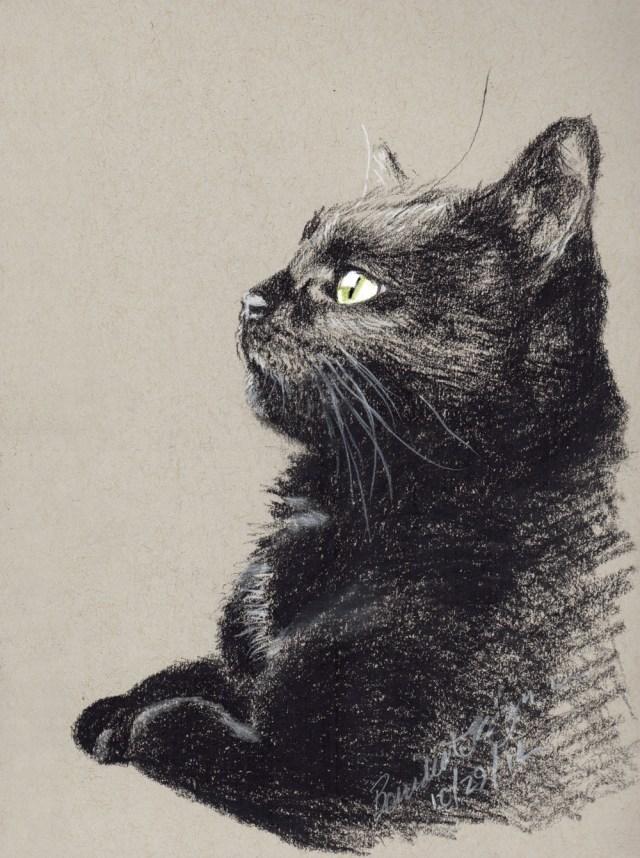 """Bella Birdwatching"", black and white charcoal on gray toned paper, 5.5″ x 8.5″ © Bernadette E. Kazmarski"