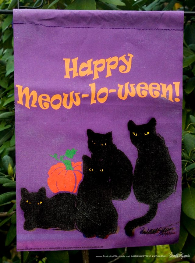 Garden Flag, Happy Meow-lo-ween