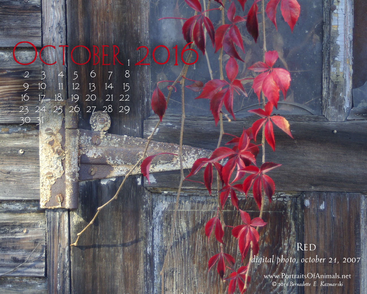 """Red"" desktop calendar, 1280 x 1024 for square and laptop monitors."