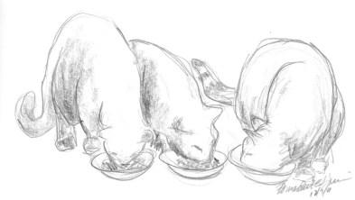 """""""Dinnertime!"""", pencil, 8″ x 5″ © Bernadette E. Kazmarski"""