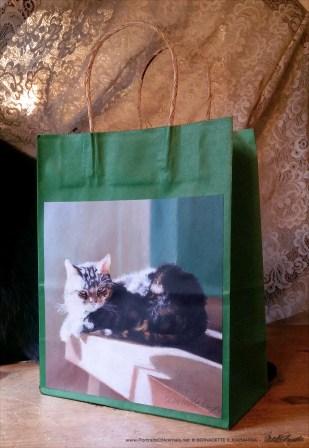 After Dinner Nap Fine Art Gift Bag