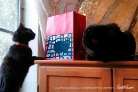 Mewsette on the Afghan gift bag, red