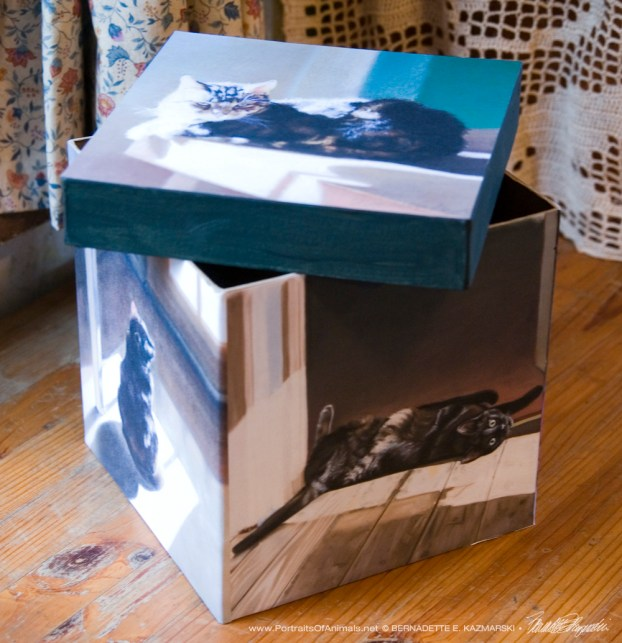 """My Cat in the Sun"" keepsake box."