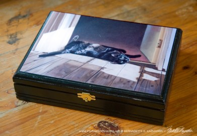"""""""Are You Looking at Me?"""" wooden keepsake made for a repurposed cigar box."""