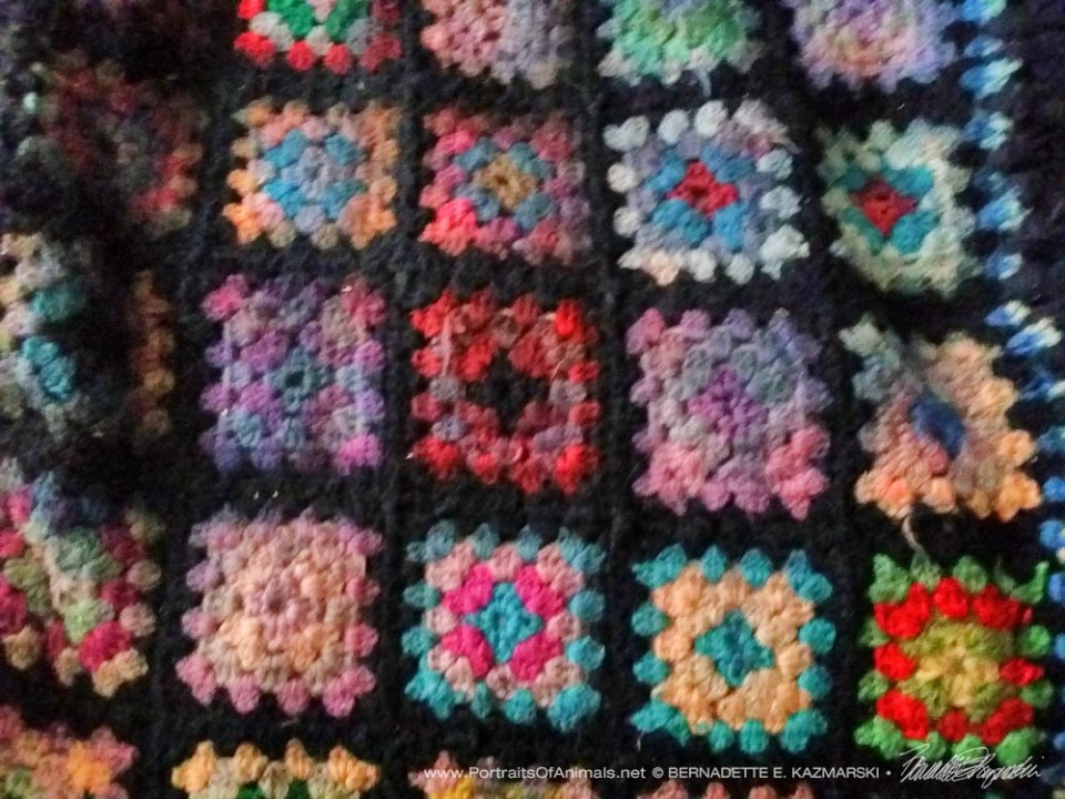 A sample section of the afghan.