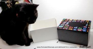 Mimi models the box when it's open.