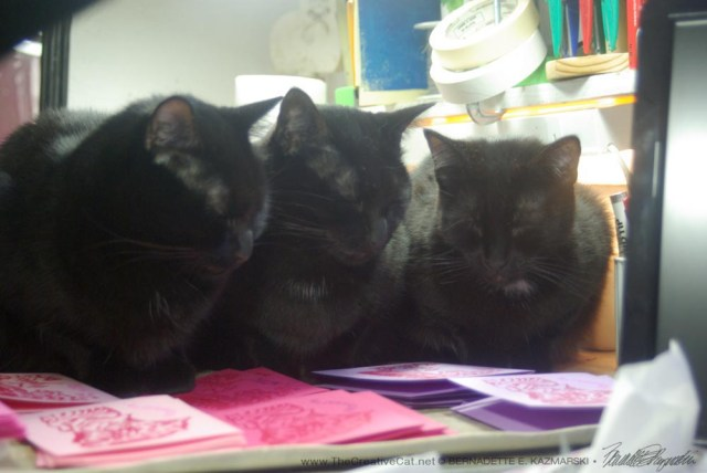 """""""These cats are all covered with funny markings,"""" say the three perfect black cats. They are very serious about their job."""