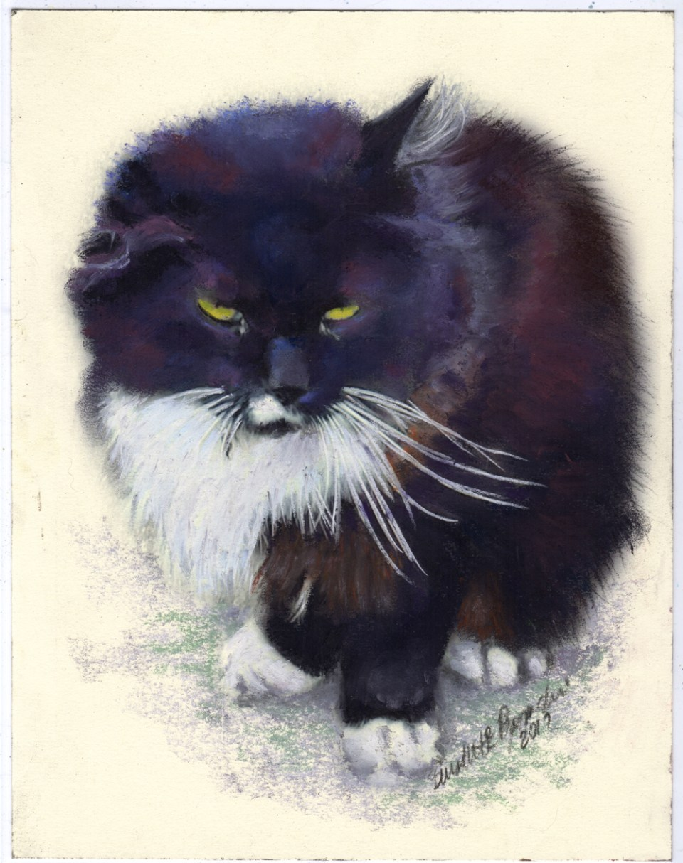 """Henry"", pastel on smooth cream cotton board, uncropped."