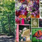 Summer 2017 Nature & Wildlife Sampler Box