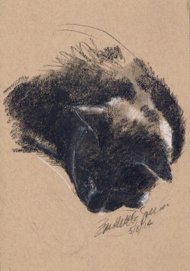"""Giuseppe Resting"", black and white charcoal on tan toned paper, 5.5"" x 8.5"" © Bernadette E. Kazmarski"