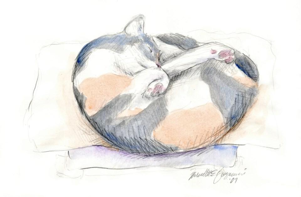 Peaches' Nap Spot, pencil with watercolor, 11″ x 7.5″, 2008 © B.E. Kazmarski