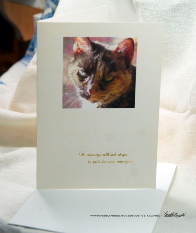 Cookie Looks at Me Animal Sympathy Card