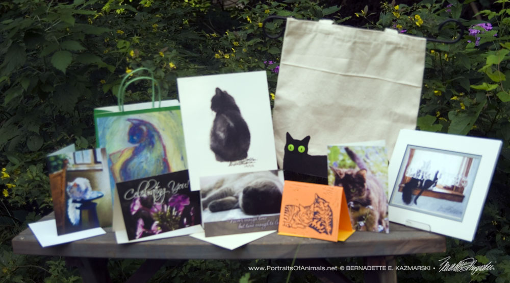 June 2017 Feline Sampler Box: Summer, Summer, Summer