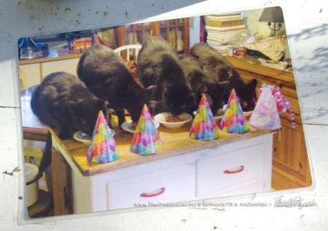 Happy Birthday! placemat