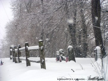 Softly Falling Snow
