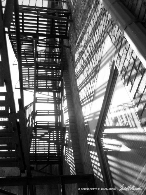 Tangled Shadows