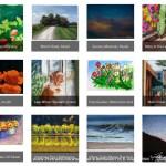September 2017 30 Paintings in 30 Days Gallery