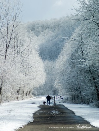 Trail27-1000px