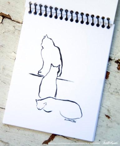 Arrangement of Three Cats