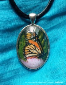 Cabochon Pendant, Monarch Wing