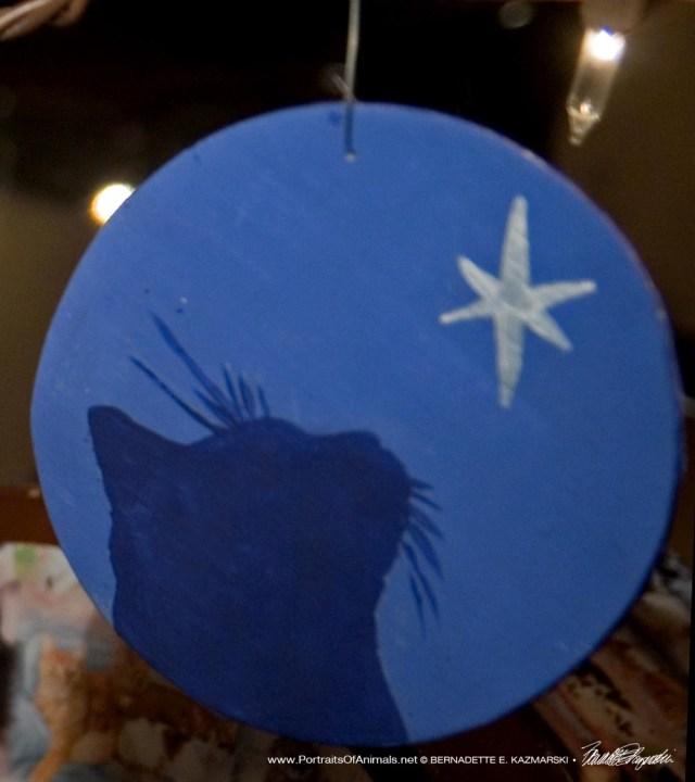 Star of Wonder Ornament.