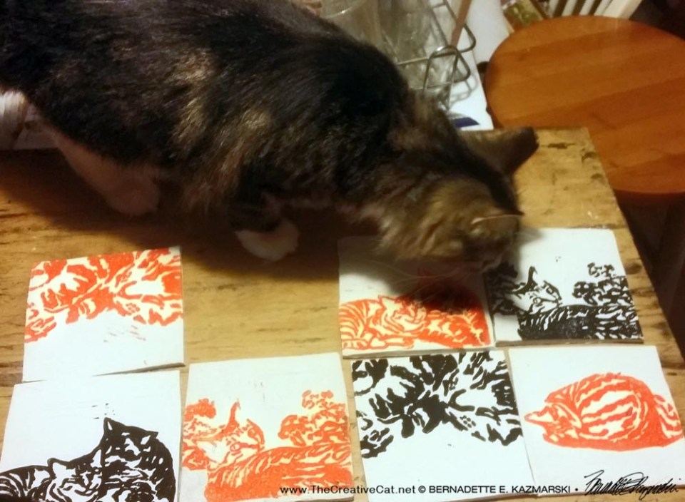 Mariposa inspects the tiles.