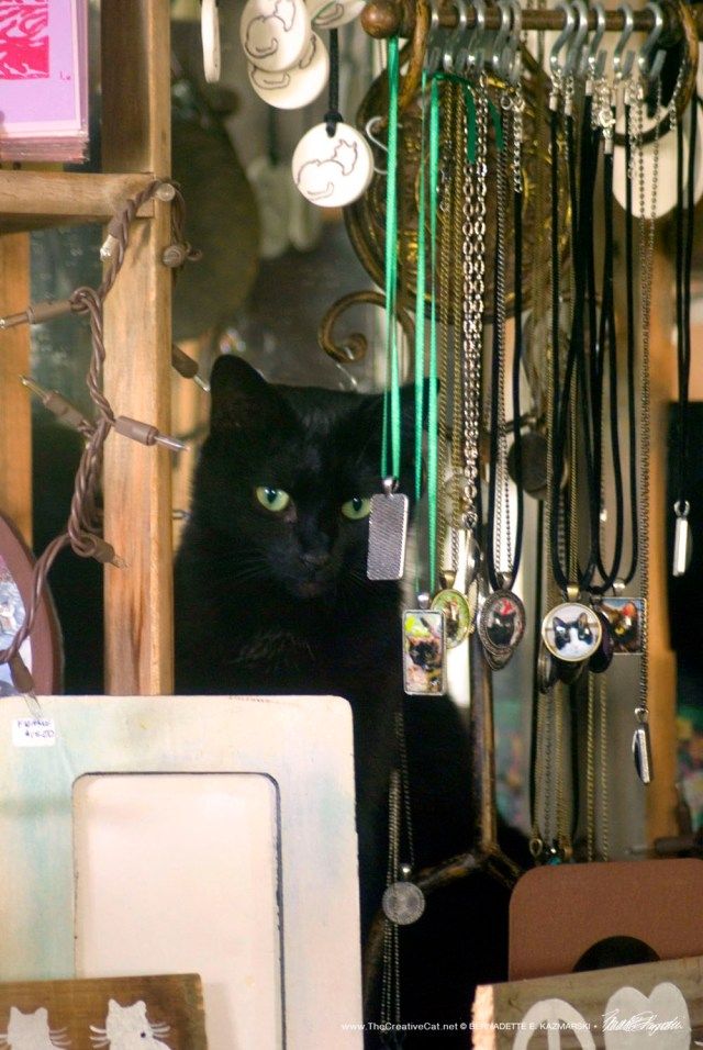 Bella likes to hide behind the cabochons.
