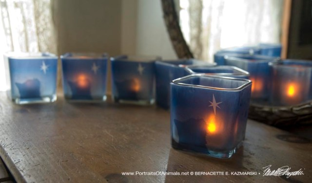 Star of Wonder Votives