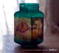 Votive-Butterflies-2-1000px