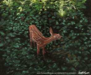 pastel painting of fawn in shade